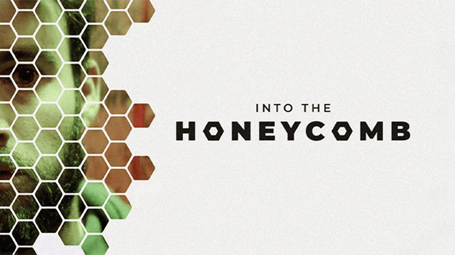 Into the Honeycomb